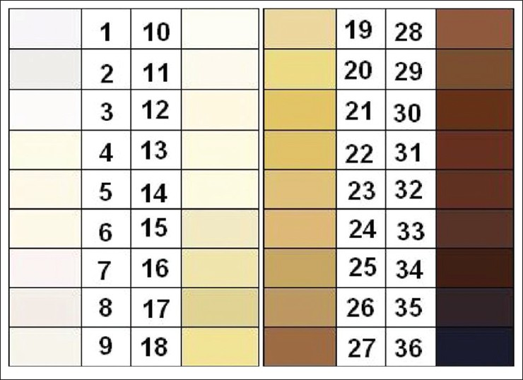 Correlation Between Skin Color Evaluation By Skin Color Scale Chart