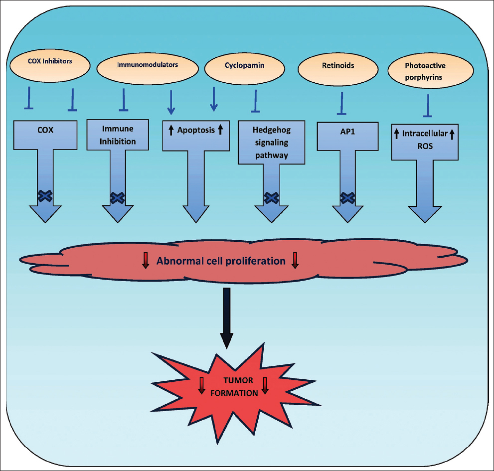 Figure 11: Pathogenesis-based treatment approaches for NMSC