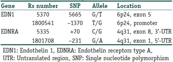 Table 2: Single nucleotide polymorphisms (SNP) in the endothelin 1 and endothelin receptors type A genes